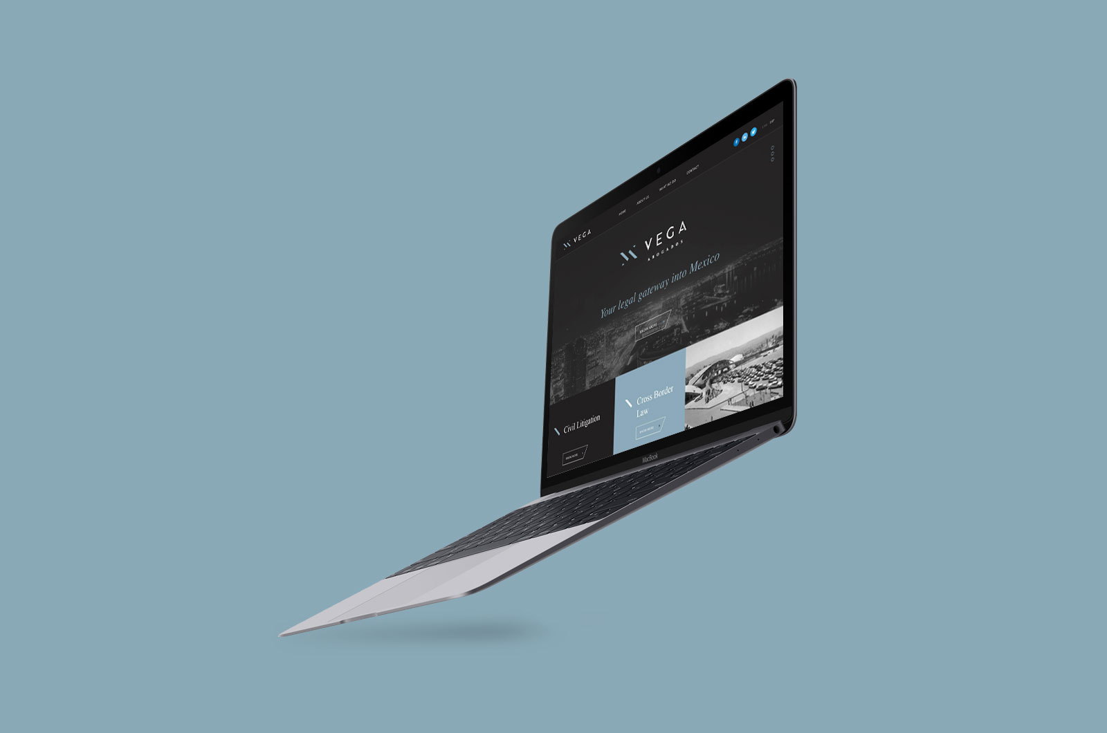 Vega-web
